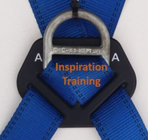 Harness-primary-attachment-point