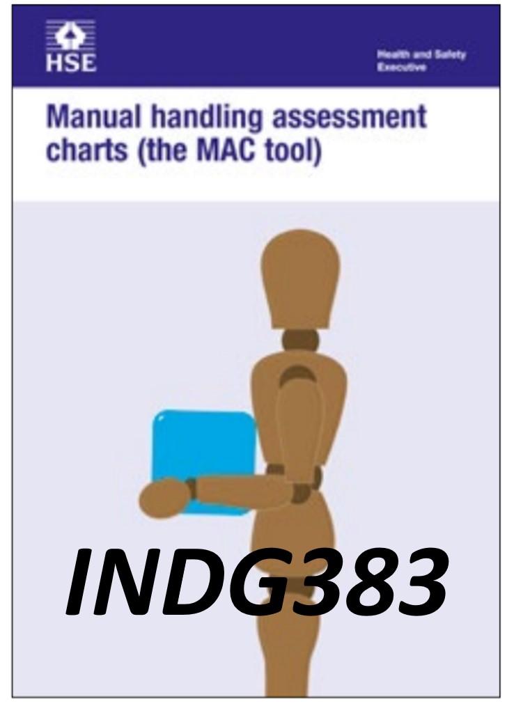 INDG383
